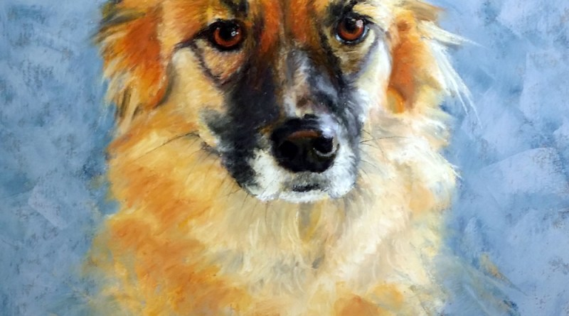 pastel portrait of german shepherd dog