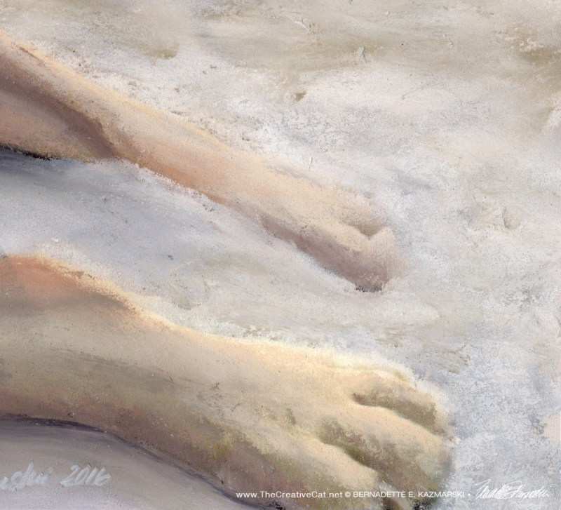 Grayson's paws in the sand.