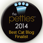 petties finalist