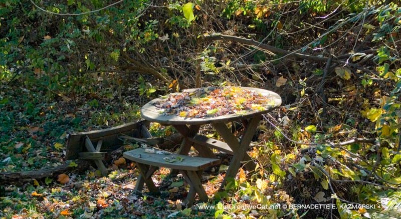 The picnic table, bench on its side.