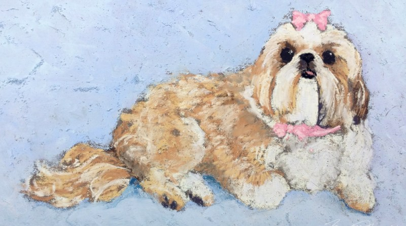 pastel painting of shi tzu