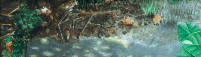 detail of watercolor painting