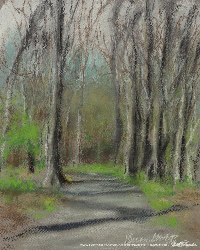 pastel sketch of trail in the woods