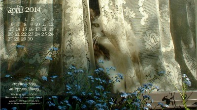 """Sophie Keeps an Eye on Things"" 2560 x 1440 for wide and HD monitors desktop calendar wallpaper"
