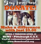 Homeless Cat Management Team and Pittsburgh CAT fundraiser.