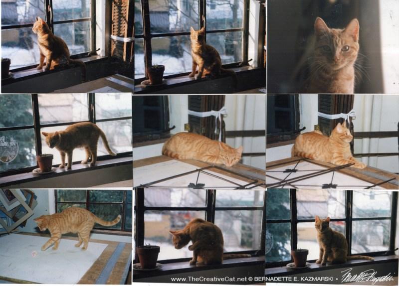 A collage of photos of Sun-Ra.