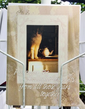 animal sympathy card.