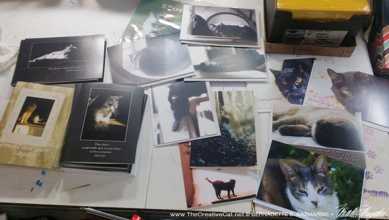 All the sympathy cards I packed for an order recently. new animal sympathy cards