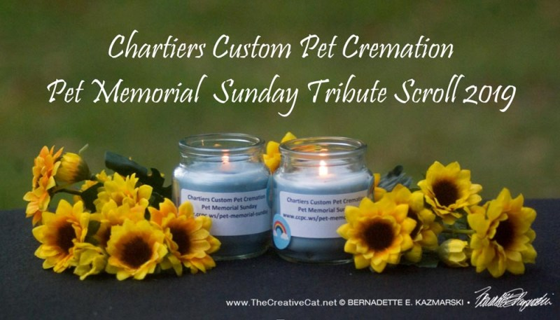 candles from pet loss ceremony
