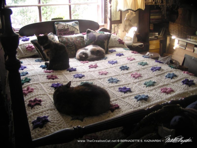 three tricolor cats on bed