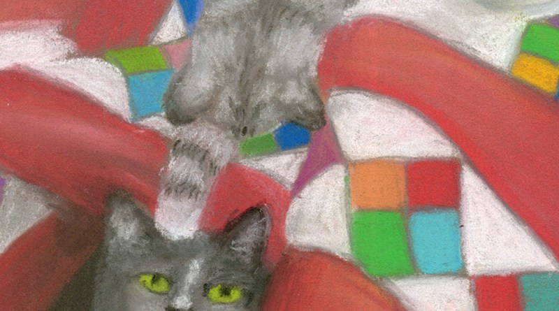 two gray cats with quilt