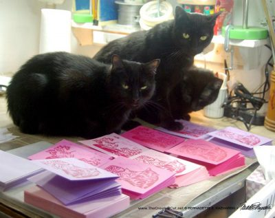 Meet my quality control team: Mewsette, Giuseppe and Jelly Bean inspect each card.