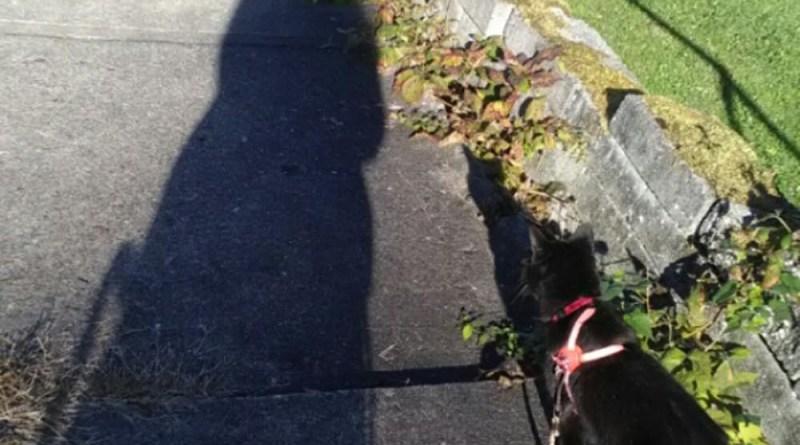 Mimi takes me for a walk.