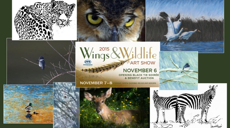 Wings & Wildlife Art Exhibit, November 7-8-9, National Aviary, Pittsburgh PA