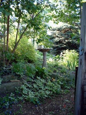 The bird bath in the shade garden © 2010 B.E. Kazmarski