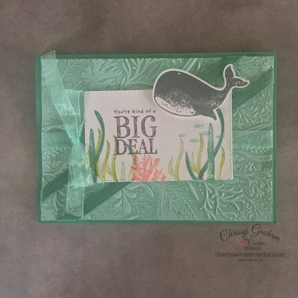 The Terrific Turtle Takeover of Shark Week with a Twist continues and this time the turtles brought their very big friend, Whale - #turtle #whaledone #whale #sharkweek #whaleofatimesuite #whaledone #stampinup #birthday #thecreativeEclectic #chrissyGraham #stampinupdemonstratoraustralia