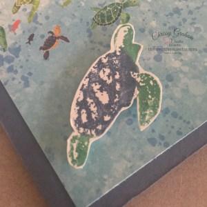 Shark Week with a Twist - Turtle Takeover - close up#turtle #whaledone #sharkweek #whaleofatimesuite #whaledone #stampinup #birthday #thecreativeEclectic #chrissyGraham #stampinupdemonstratoraustralia