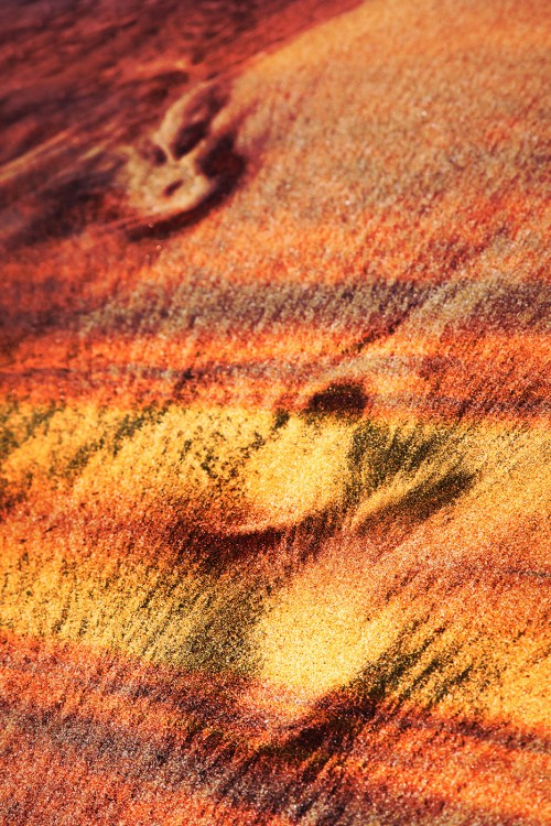 Abstract Footpath in Sand Image