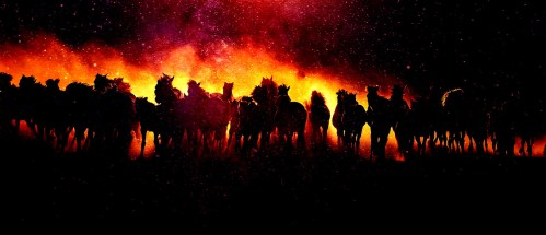 Blazing-Group-Of-Horses-Running