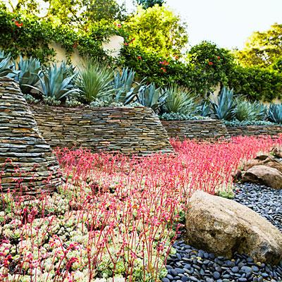 16299 Cypress St., Los Gatos, Garden
