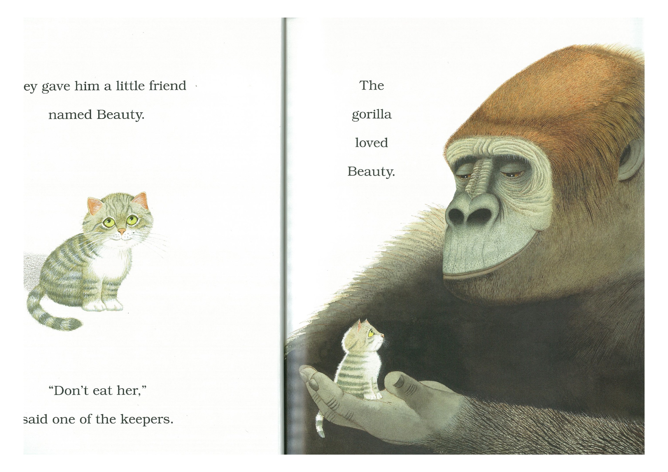 Little Beauty By Anthony Browne Picture Book