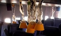 cabin pressure oxygen masks