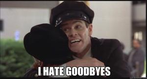 i hate goodbyes