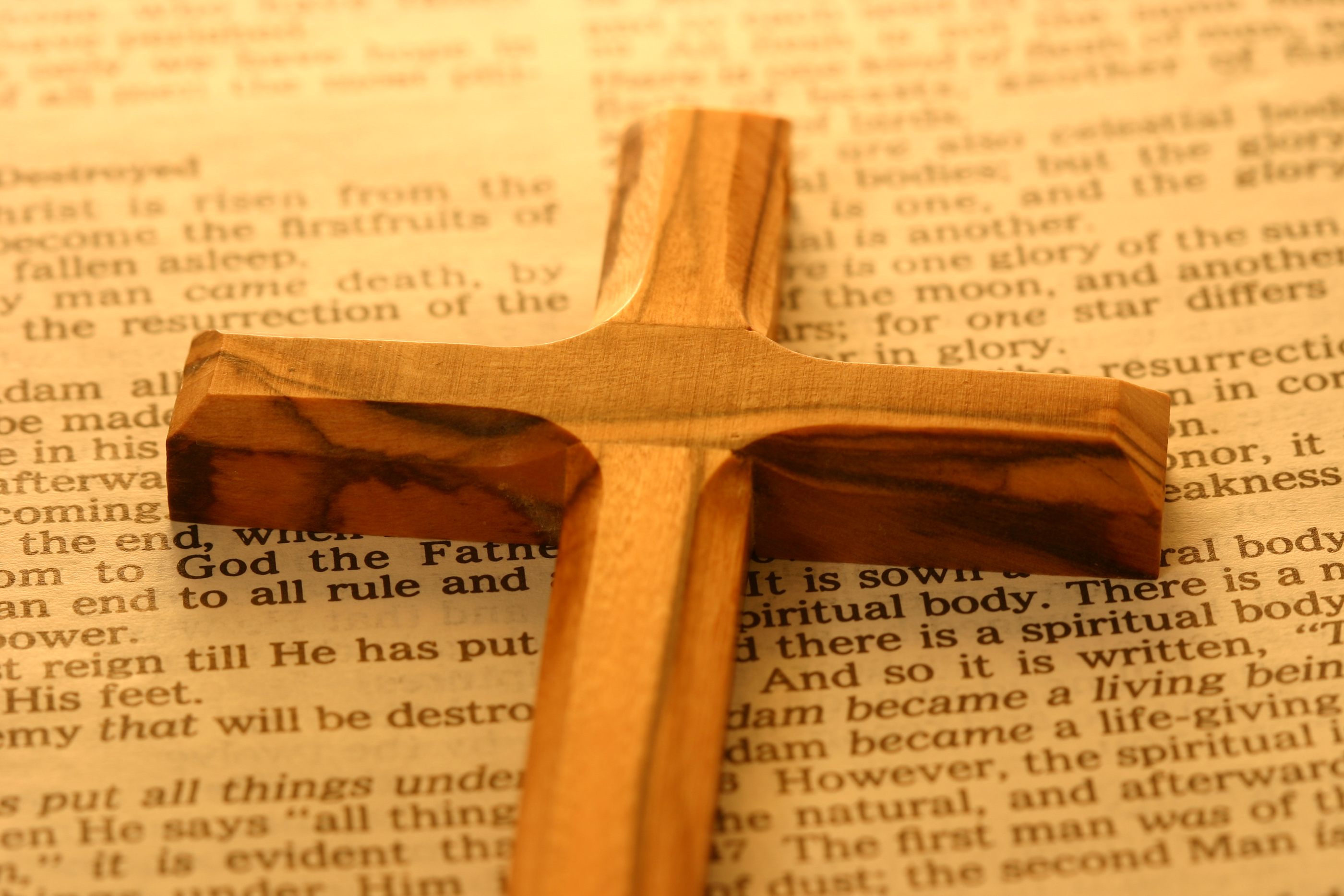 cross and bible 1302668