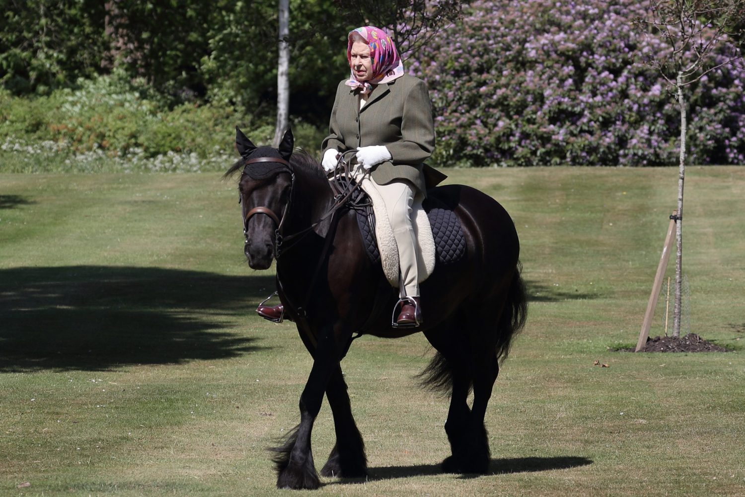 Her Majesty invited a photographer to Windsor to see her riding in May 2020. PA/Buckingham Palace