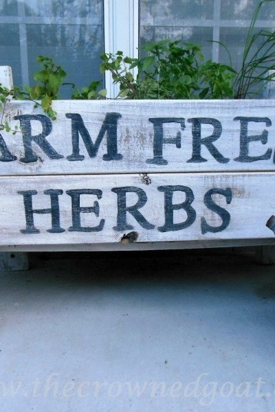 herb garden container