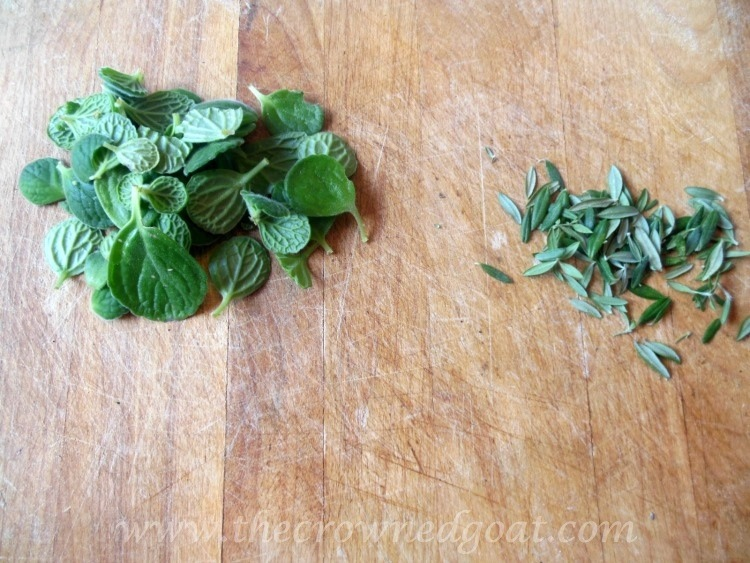 111714-3 A Gift From the Kitchen: Lemon Balm and Rosemary Sugar Scrub Crafts Holidays