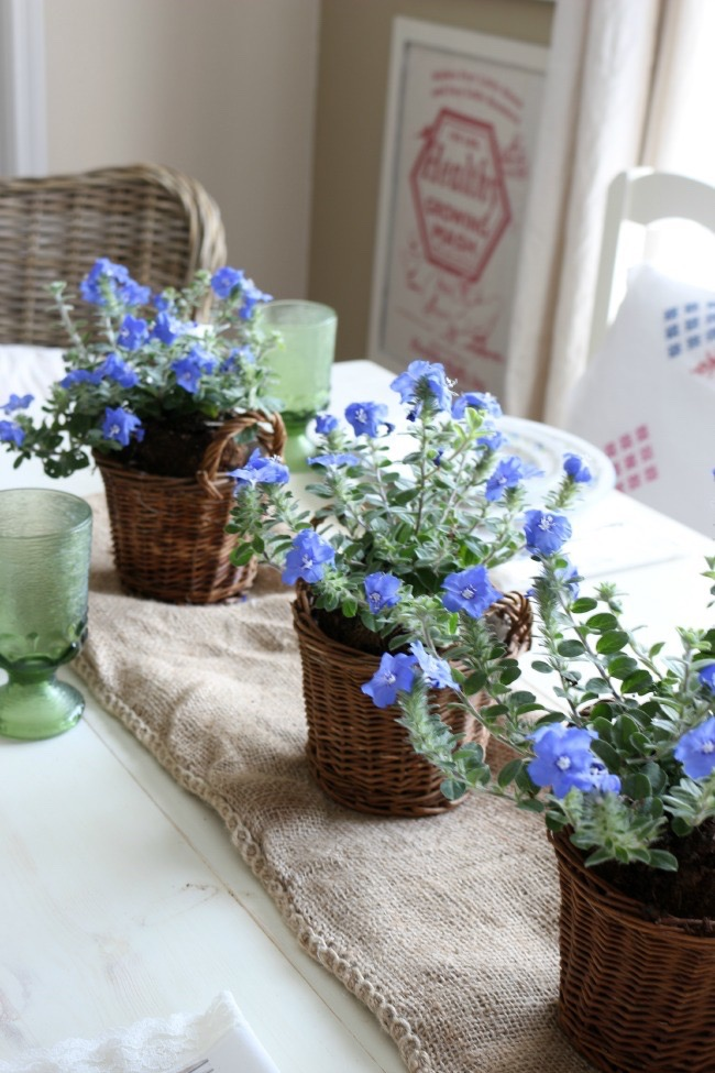 Summer-Tablescape-With-Potted-Plants-The-Crowned-Goat-052715-3 Easy Summer Tablescape Decorating