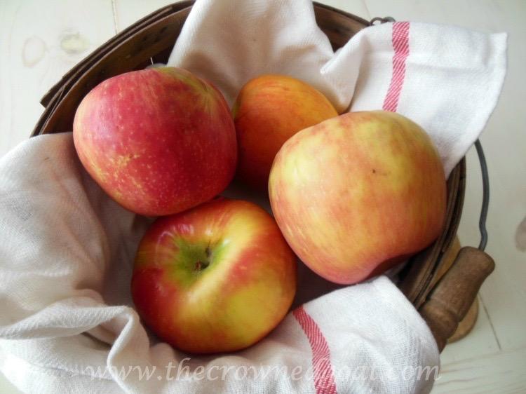Baked-Apple-Butterscotch-Bars-092515-1 Baked Apple Butterscotch Bars Baking