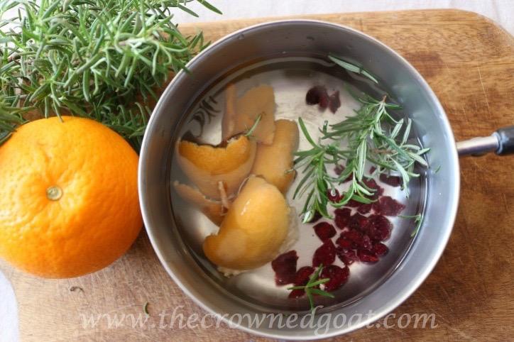 021916-7-10-Citrus-Inspired-Simmer-Pot-Recipes 10 Citrus Inspired Simmer Pot Recipes DIY