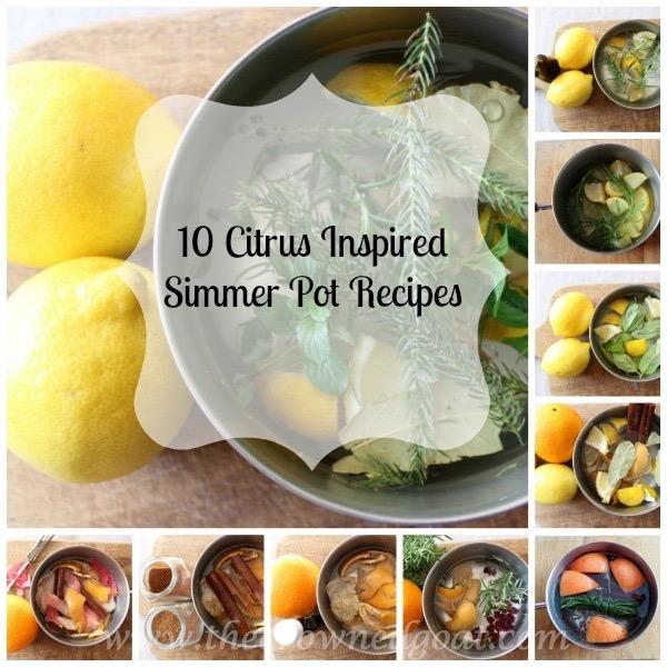 10-Citrus-Inspired-Simmer-Pot-Recipes 10 Citrus Inspired Simmer Pot Recipes DIY