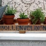 DIY Dutch Tulip Crate