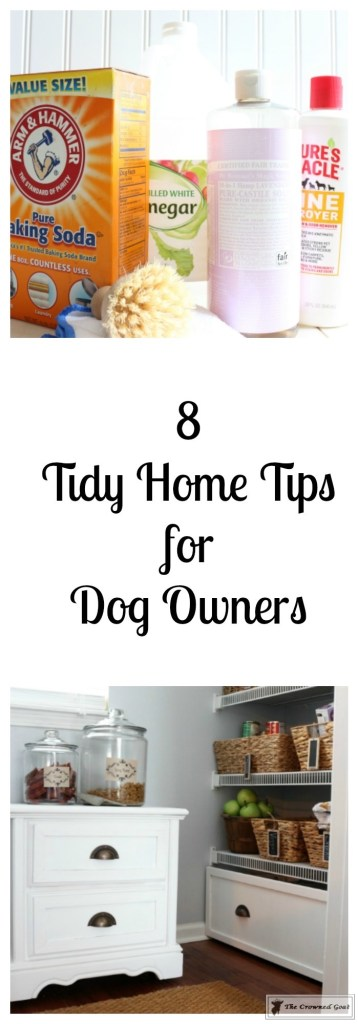 8 Tidy Home Tips for Dog Owners-6