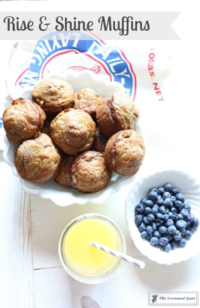 Rise and Shine Muffin Recipe-1