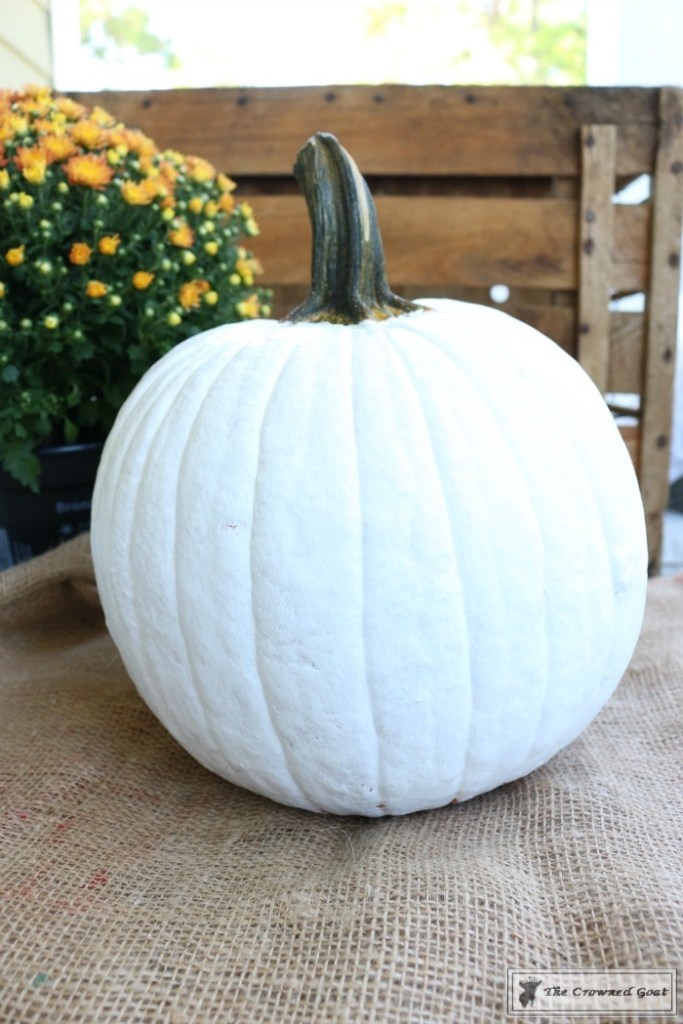 How-to-Customize-a-Painted-Pumpkin-5-683x1024 How to Personalize Pumpkins with Paint Decorating DIY Fall