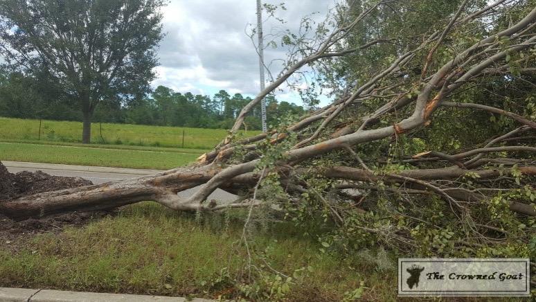 Thoughts-on-Hurricane-Matthew-5 Thoughts on Hurricane Matthew Uncategorized