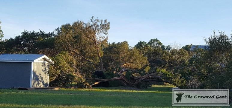 Thoughts-on-Hurricane-Matthew-7 Thoughts on Hurricane Matthew Uncategorized