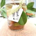 Holiday Simmer Pot Recipe & Hostess Gift Idea