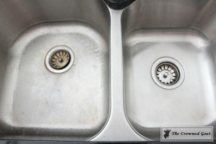 Lemongrass & Lavender Sink Scrub-15