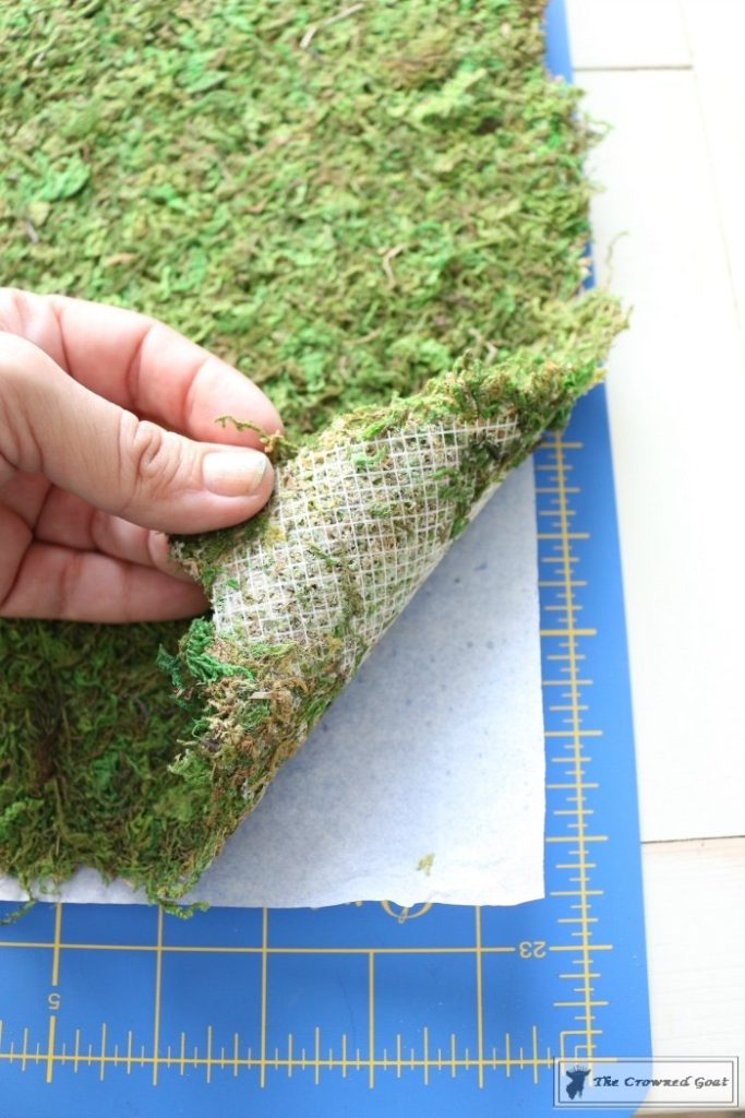 How-to-Make-Moss-Placemats-5-683x1024 The Easiest Way to Make Moss Placemats Crafts Decorating DIY Spring