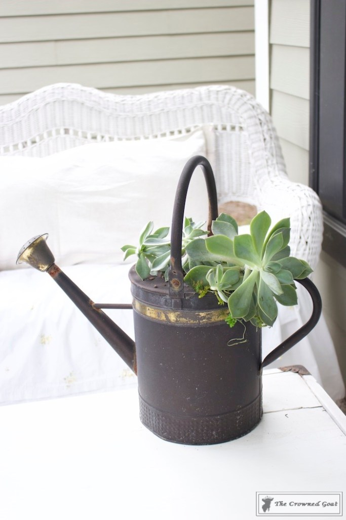 How to Create a Watering Can Succulent Centerpiece-11