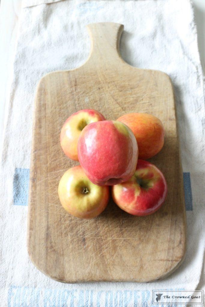 Simple-Apple-Nachos-Three-Ways-The-Crowned-Goat-2-683x1024 Three Ways to Make Apple Nachos Baking DIY