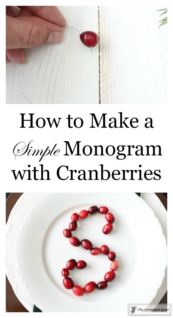 How-to-Make-a-Monogram-with-Cranberries-The-Crowned-Goat-1 How to Make a Simple Monogram with Cranberries Christmas