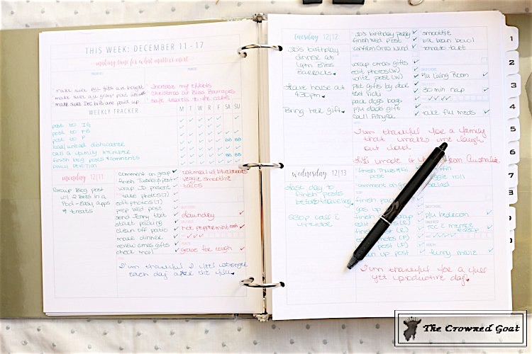 The-Organized-Life-Planner-The-Crowned-Goat-2-1 The Organized Life Planner Review Organization