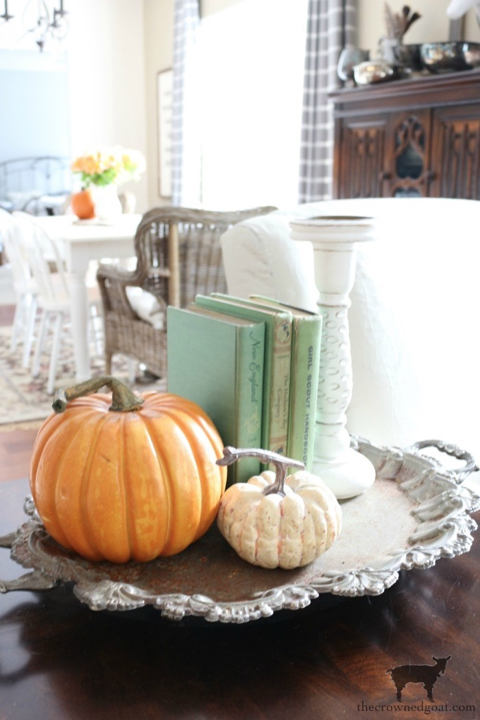 Easy-Ways-to-Find-Fall-Inspiration-The-Crowned-Goat-6 9 Quick & Easy Ways to Find Fall Inspiration Decorating Fall Organization