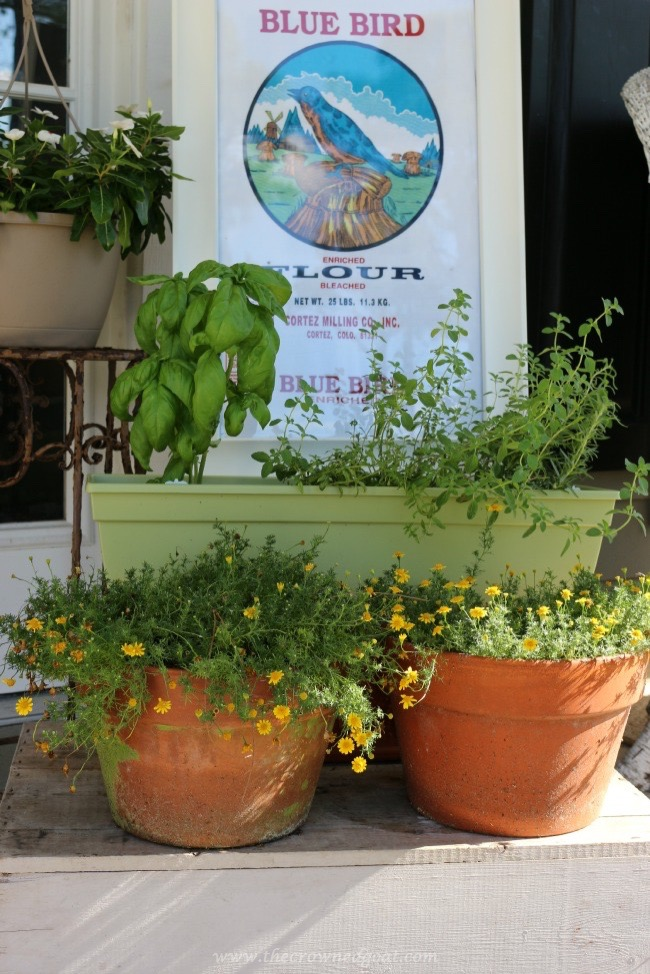 Victory Garden Inspired Summer Porch - The Crowned Goat - 060215-2